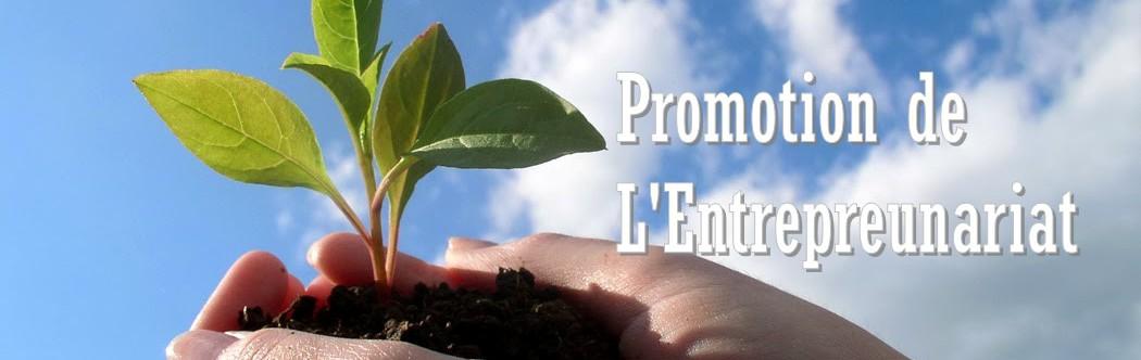 Promotion de l'entrepreunariat