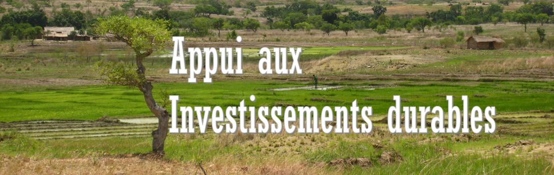 Appui aux investissements durables